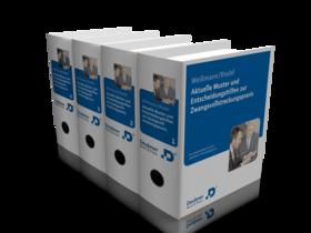 Aktuelle Muster und Entscheidungshilfen zur Zwangsvollstreckungspraxis